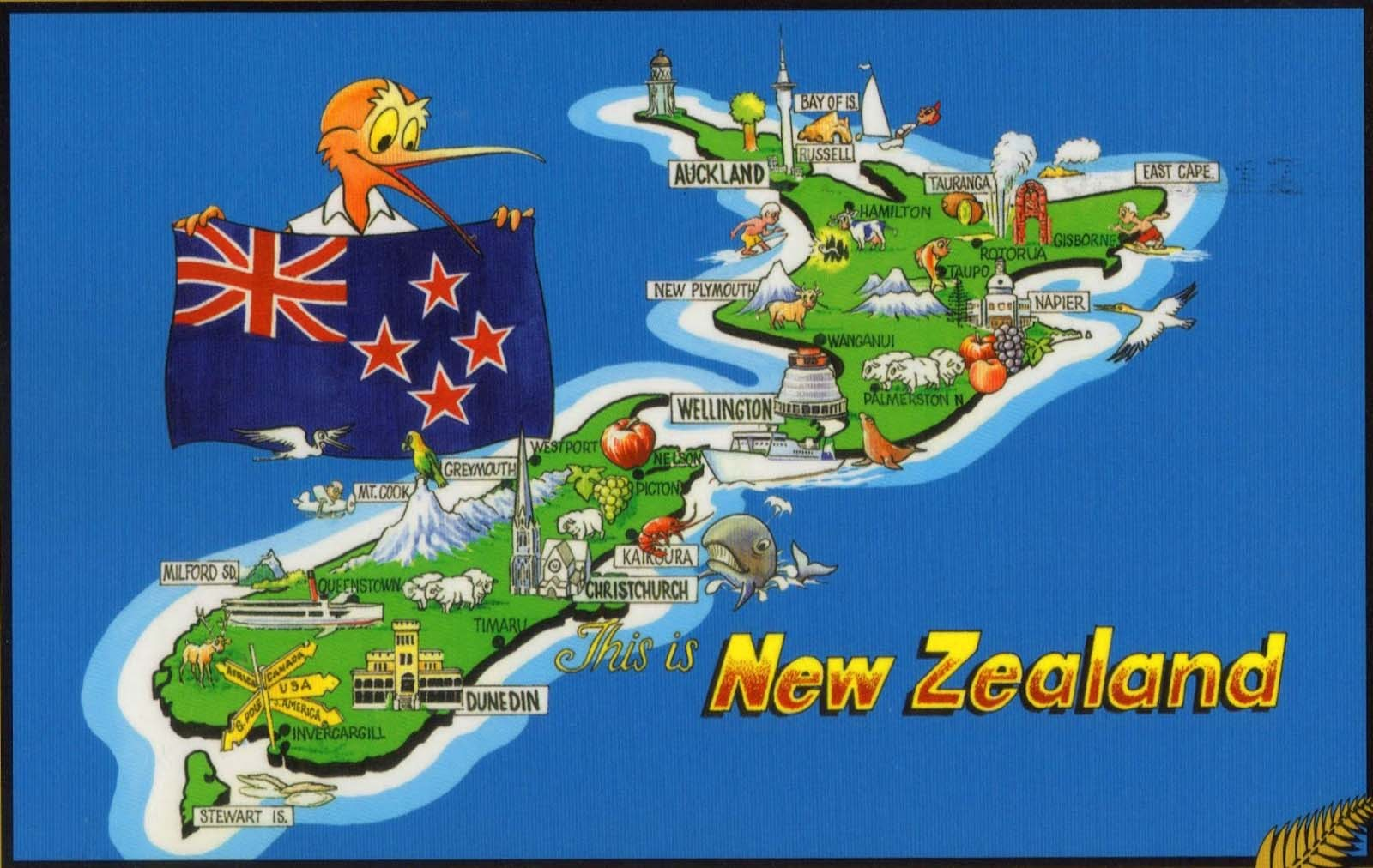 Experiences to study abroad in New Zealand